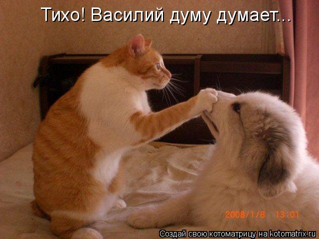 Котоматрица: Тихо! Василий думу думает...