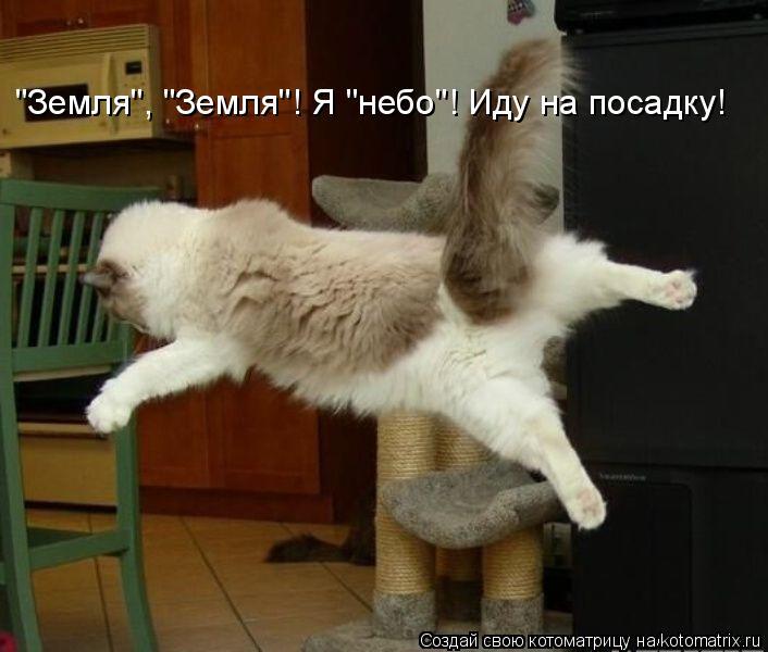 """Котоматрица: """"Земля"""", """"Земля""""! Я """"небо""""! Иду на посадку!"""