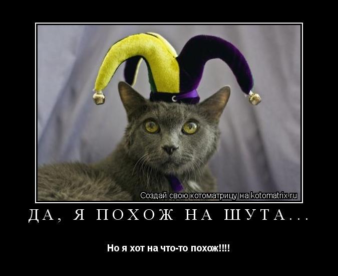 Котоматрица: Да, я похож на Шута... Но я хот на что-то похож!!!!