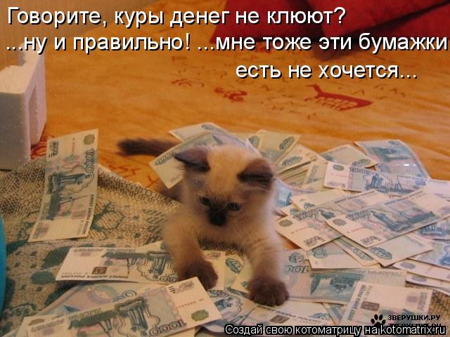 Котоматрица: Говорите, куры денег не клюют? ...ну и правильно! ...мне тоже эти бумажки  есть не хочется...