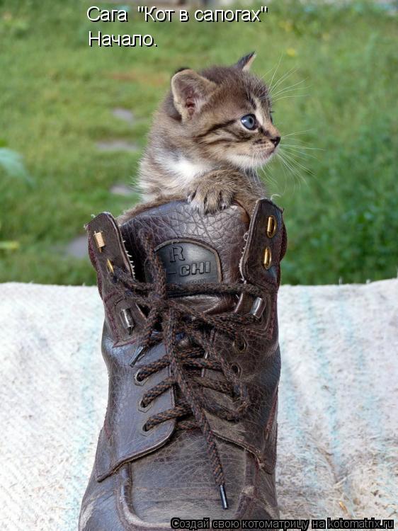 """Котоматрица: Сага  """"Кот в сапогах"""" Начало."""
