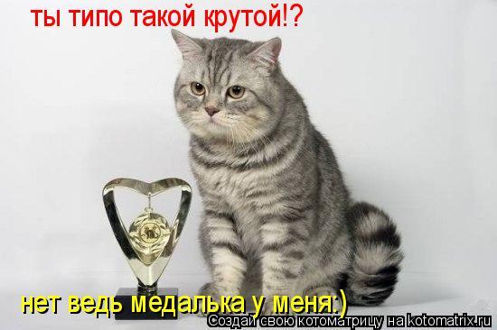 Котоматрица: ты типо такой крутой!? нет ведь медалька у меня:)