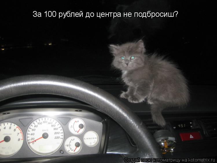 Котоматрица: За 100 рублей до центра не подбросиш?