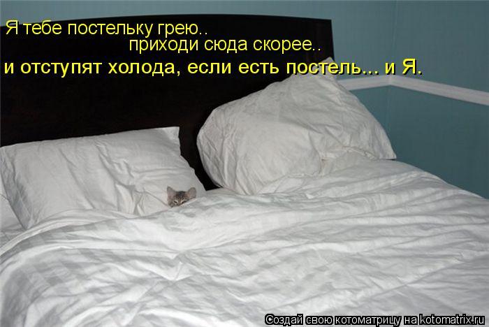 Котоматрица: Я тебе постельку грею.. приходи сюда скорее.. и отступят холода, если есть постель... и Я.