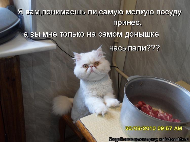 Котоматрица: Я вам,понимаешь ли,самую мелкую посуду  принес, а вы мне только на самом донышке  насыпали???