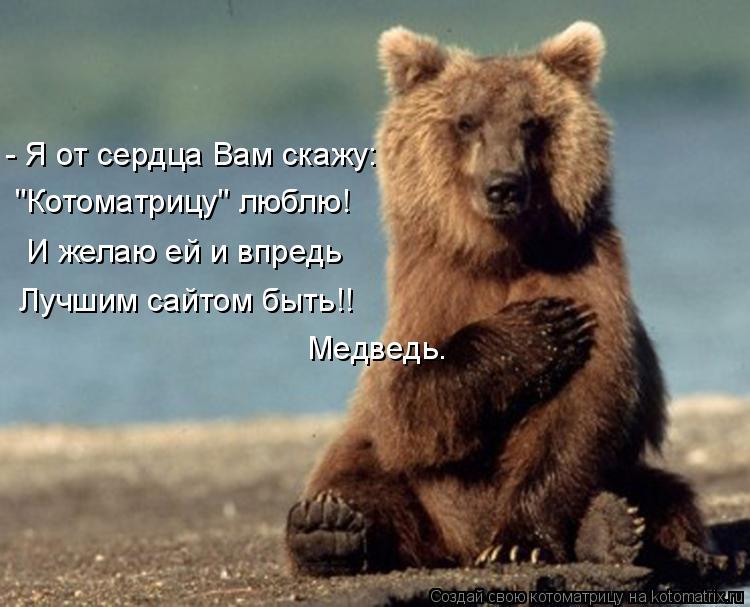 """Котоматрица: - Я от сердца Вам скажу: """"Котоматрицу"""" люблю! И желаю ей и впредь Лучшим сайтом быть!! Медведь."""