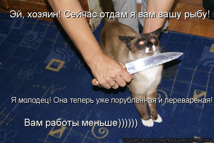 Котоматрица: Эй, хозяин! Сейчас отдам я вам вашу рыбу! Я молодец! Она теперь уже порубленная и перевареная! Вам работы меньше))))))