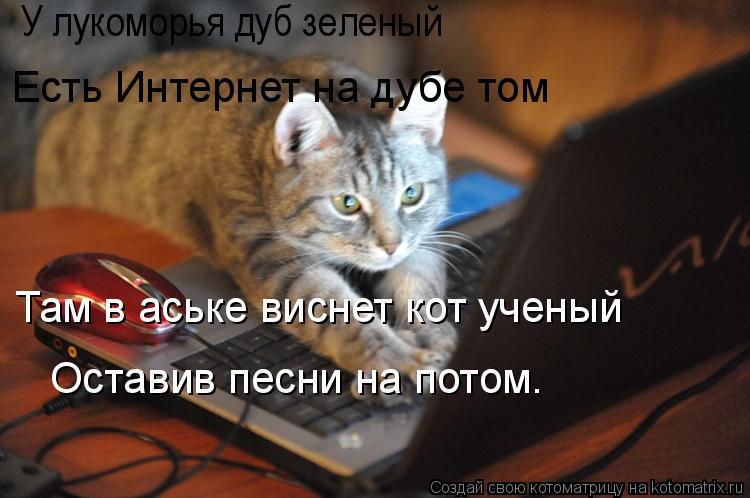 Котоматрица: У лукоморья дуб зеленый Есть Интернет на дубе том Там в аське виснет кот ученый Оставив песни на потом.