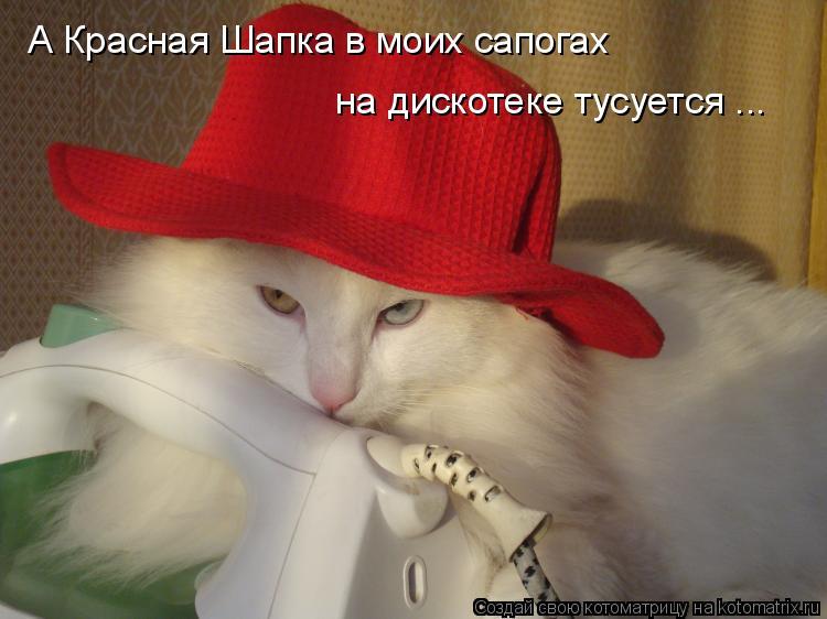 Котоматрица: А Красная Шапка в моих сапогах  на дискотеке тусуется ...