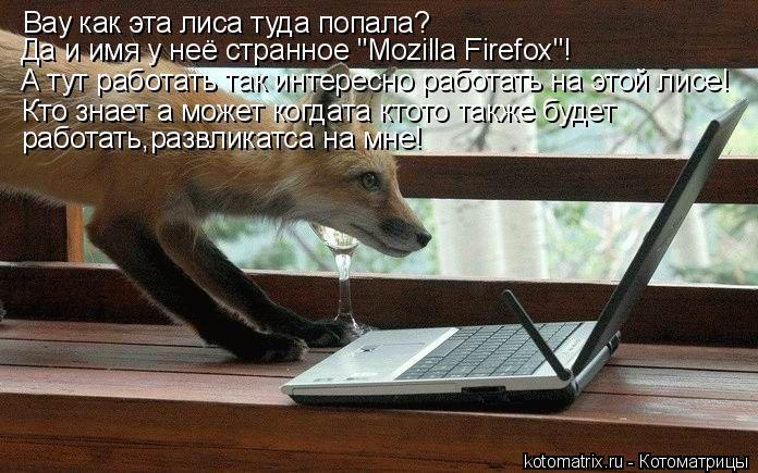 """Котоматрица: Вау как эта лиса туда попала? Да и имя у неё странное """"Mozilla Firefox""""! А тут работать так интересно работать на этой лисе! Кто знает а может когдата"""