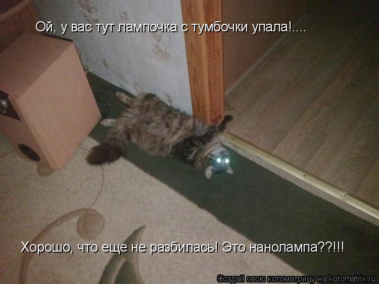 Котоматрица: Ой, у вас тут лампочка с тумбочки упала!.... Хорошо, что еще не разбилась! Это нанолампа??!!!