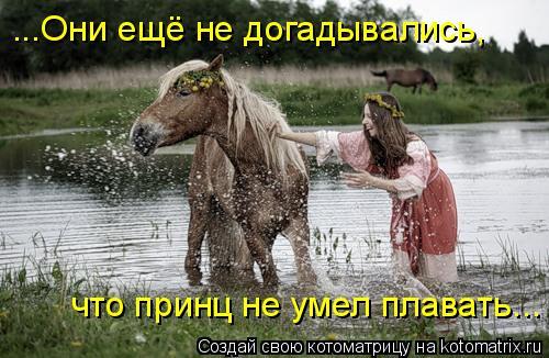 Котоматрица: что принц не умел плавать... ...Они ещё не догадывались,
