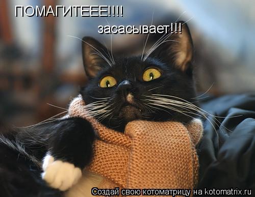 Котоматрица: ПОМАГИТЕЕЕ!!!! засасывает!!!