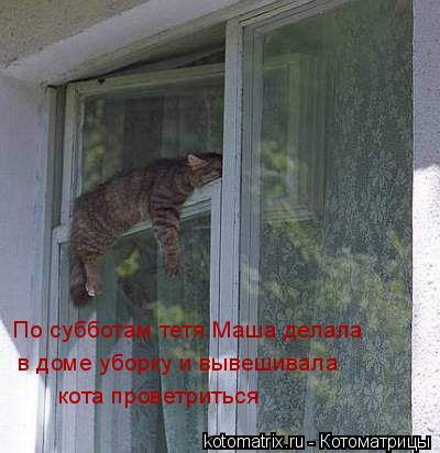 Котоматрица: По субботам тетя Маша делала  в доме уборку и вывешивала кота проветриться