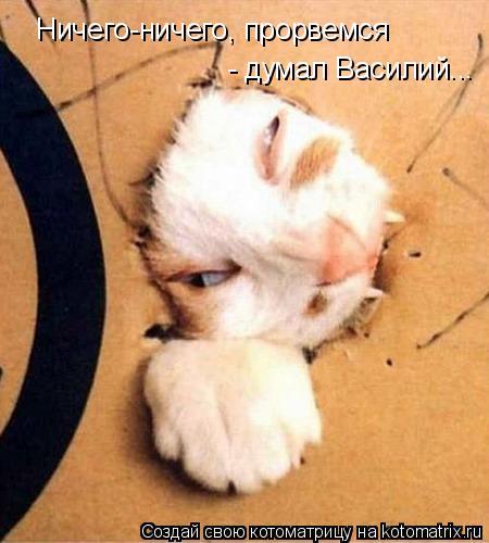 Котоматрица: Ничего-ничего, прорвемся  - думал Василий...