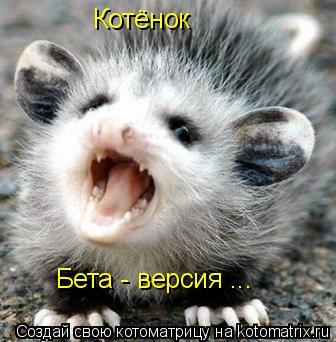 Котоматрица: Котёнок   Бета - версия ...
