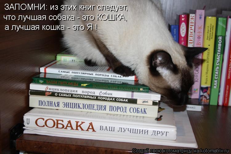 Котоматрица: ЗАПОМНИ: из этих книг следует,  что лучшая собака - это КОШКА, а лучшая кошка - это Я !