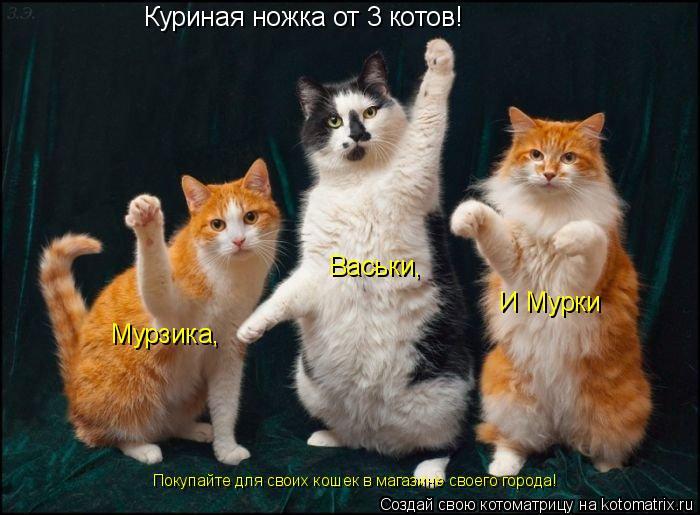 Котоматрица: Куриная ножка от 3 котов! Мурзика, Васьки, И Мурки Покупайте для своих кошек в магазине своего города!