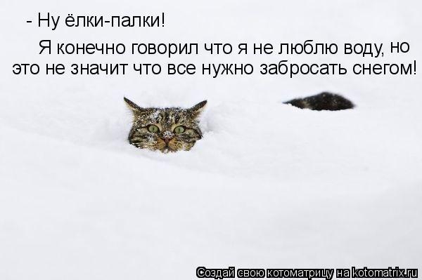 Котоматрица: - Ну ёлки-палки! Я конечно говорил что я не люблю воду,  это не значит что все нужно забросать снегом! но