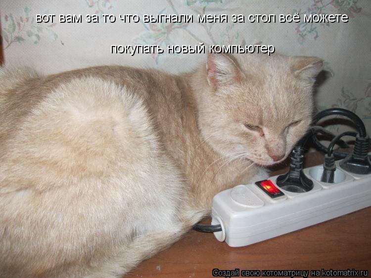 Котоматрица: вот вам за то что выгнали меня за стол всё можете  покупать новый компьютер