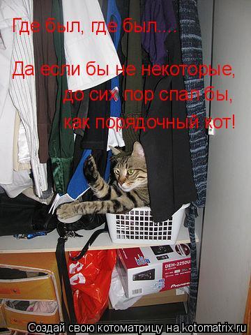 Котоматрица: Где был, где был.... Да если бы не некоторые, до сих пор спал бы, как порядочный кот!