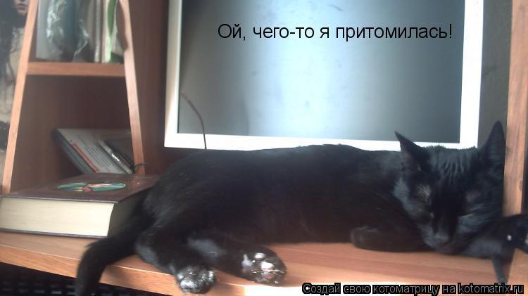 Котоматрица: Ой, чего-то я притомилась!