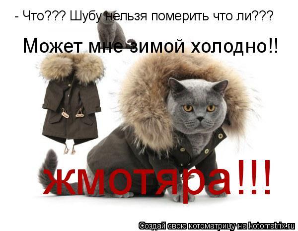 Котоматрица: - Что??? Шубу нельзя померить что ли??? Может мне зимой холодно!! жмотяра!!!