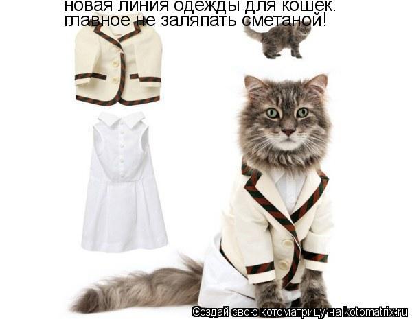 Котоматрица: новая линия одежды для кошек. главное не заляпать сметаной!