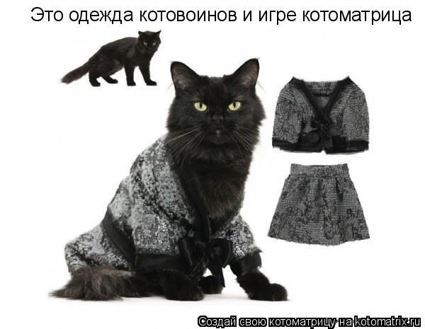 Котоматрица: Это одежда котовоинов и игре котоматрица