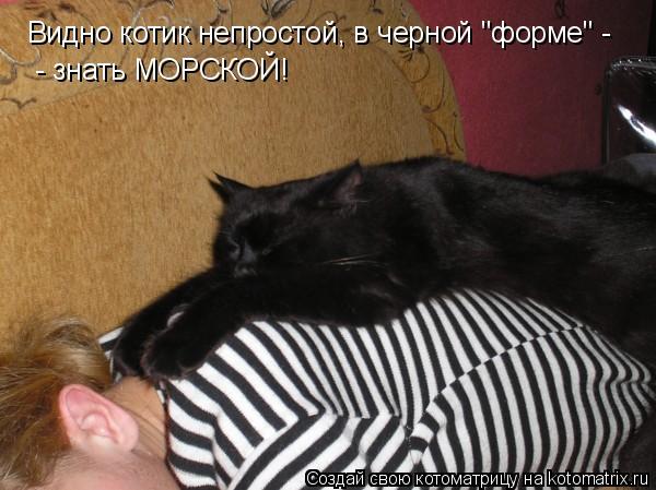"""Котоматрица: Видно котик непростой, в черной """"форме"""" - - знать МОРСКОЙ!"""