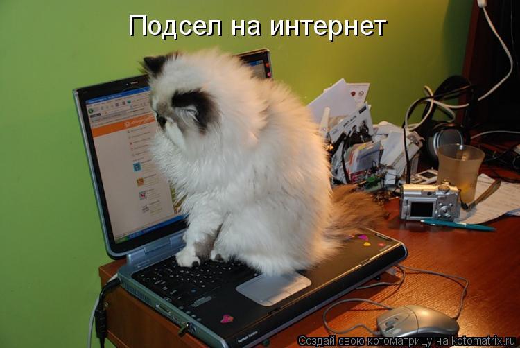 Подсел на интернет