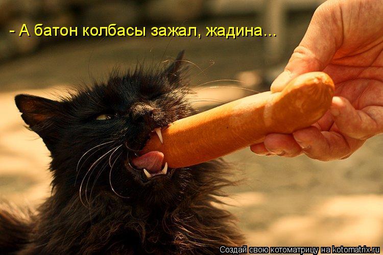 - А батон колбасы зажал, жадина...