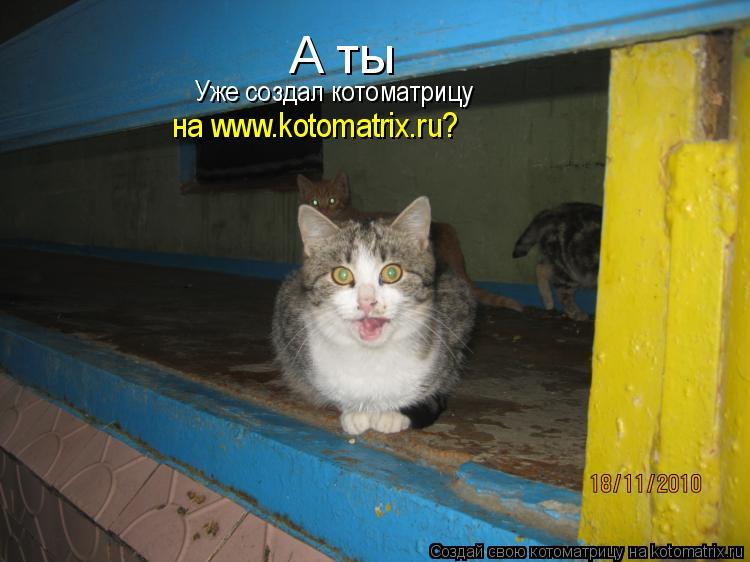 Котоматрица: А ты Уже создал котоматрицу на www.kotomatrix.ru?