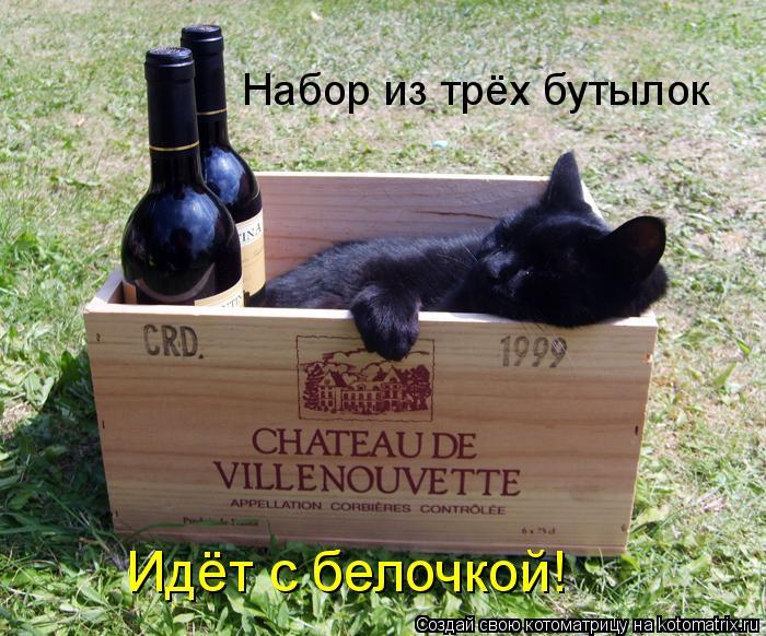 Котоматрица: Набор из трёх бутылок Идёт с белочкой!