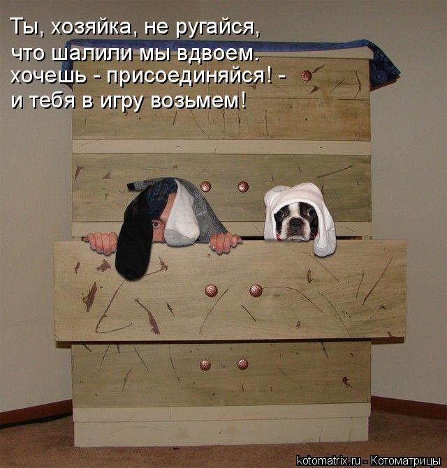 Котоматрица: Ты, хозяйка, не ругайся, хочешь - присоединяйся! - что шалили мы вдвоем. и тебя в игру возьмем!
