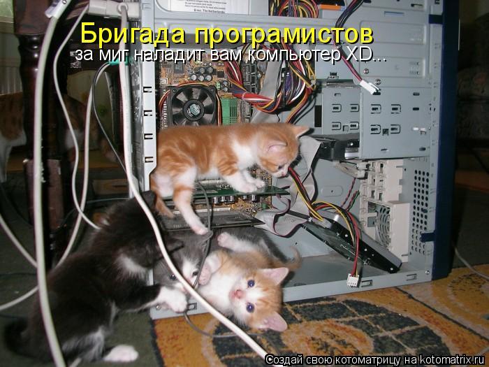 Котоматрица: Бригада програмистов за миг наладит вам компьютер ХD...