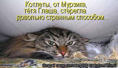 Котоматрица: Котлеты, от Мурзика, тётя Глаша, стерегла довольно странным способом...