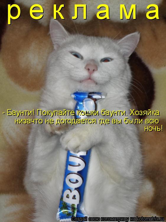 Котоматрица: р е к л а м а  - Баунти! Покупайте кошки баунти. Хозяйка низачто не догодается где вы были всю  ночь!