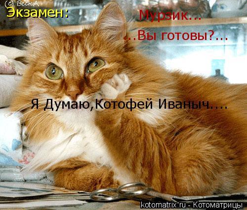 Котоматрица: Экзамен: ...Вы готовы?... Мурзик... Я Думаю,Котофей Иваныч....