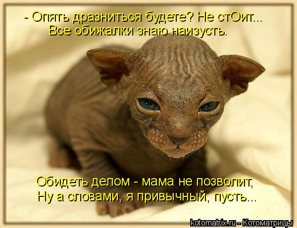смайлик дразнится: