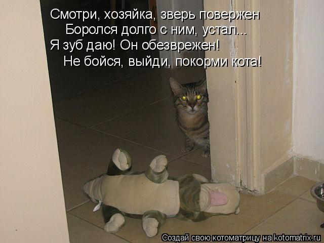 Котоматрица: Смотри, хозяйка, зверь повержен Я зуб даю! Он обезврежен! Не бойся, выйди, покорми кота! Боролся долго с ним, устал...