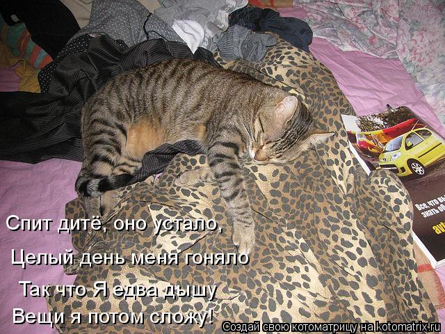 Котоматрица: Спит дитё, оно устало, Так что Я едва дышу Целый день меня гоняло Вещи я потом сложу!