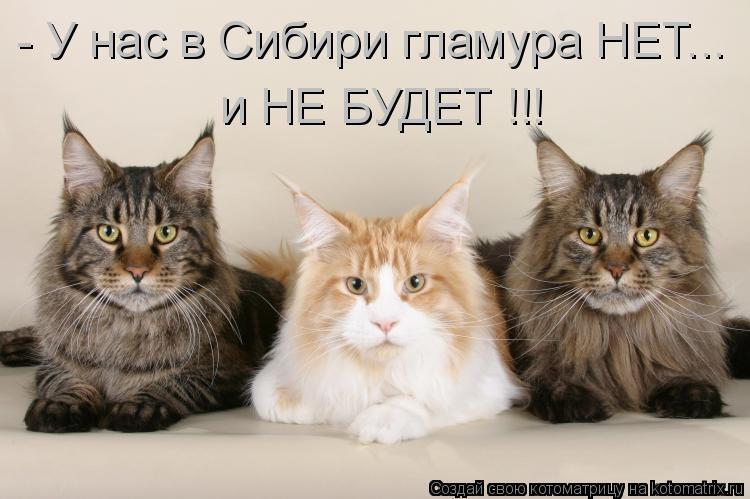 - У нас в Сибири гламура НЕТ...  и НЕ БУДЕТ !!!