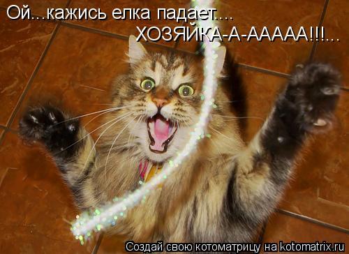 Котоматрица: Ой...кажись елка падает.... ХОЗЯЙКА-А-ААААА!!!...
