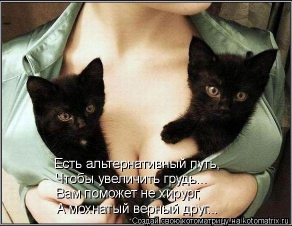 Котоматрица: Есть альтернативный путь, Чтобы увеличить грудь... Вам поможет не хирург,  А мохнатый верный друг...