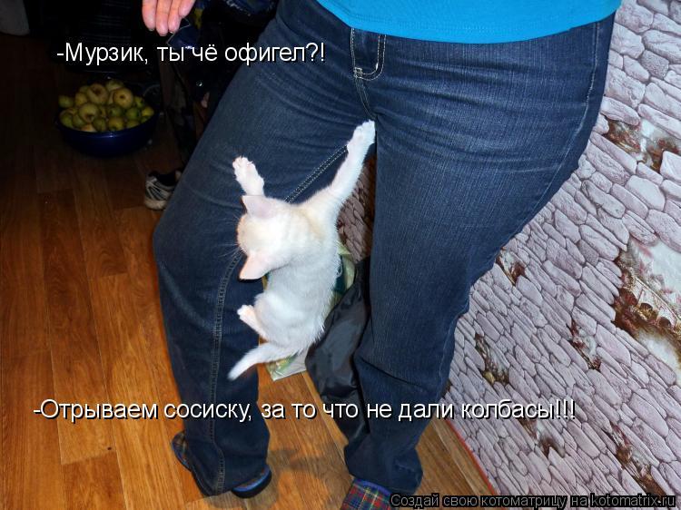 Котоматрица: -Мурзик, ты чё офигел?! -Отрываем сосиску, за то что не дали колбасы!!!