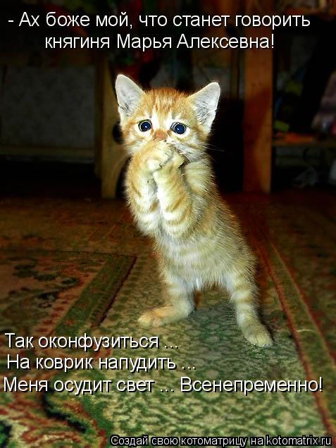 Котоматрица: - Ах боже мой, что станет говорить княгиня Марья Алексевна! Так оконфузиться ...  На коврик напудить ... Меня осудит свет ... Всенепременно!
