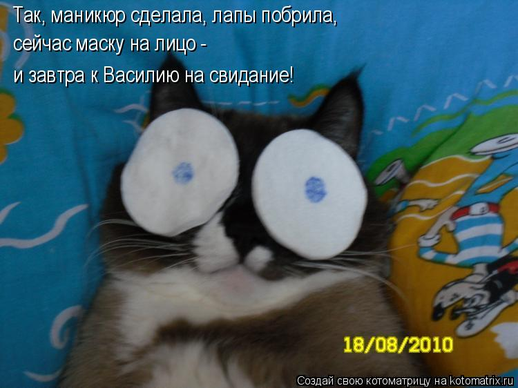 Котоматрица: Так, маникюр сделала, лапы побрила, сейчас маску на лицо - и завтра к Василию на свидание!