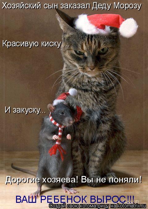 Котоматрица: Хозяйский сын заказал Деду Морозу Красивую киску ... И закуску... ВАШ РЕБЕНОК ВЫРОС!!! Дорогие хозяева! Вы не поняли!