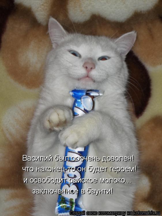 Котоматрица: Василий был ооочень доволен! заключенное в баунти! что наконец-то он будет героем! и освободит райское молоко...